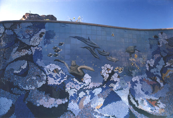 MOSAIC REEF POOL  -